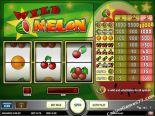 tragamonedas casino Wild Melon Play'nGo